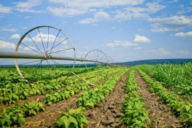 agricultura datând din marea britanie