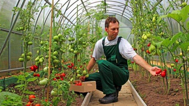 Intalnirea femeilor agricole
