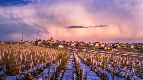 VOGUE: Why Moldova Is a Wine Destination Worth Knowing Now